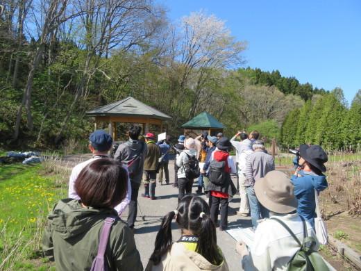 市民の森ブログ バードウォッチング講座開催!_e0145841_13491068.jpg