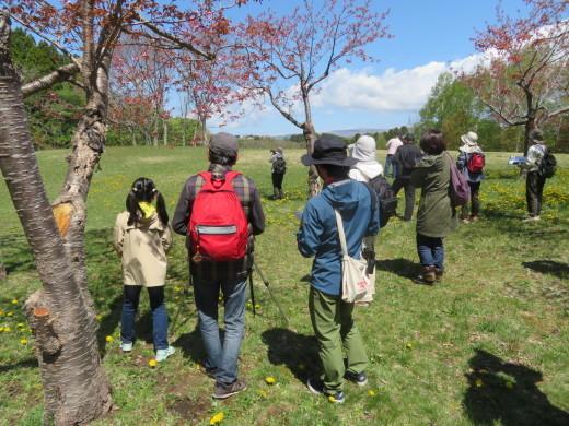 市民の森ブログ バードウォッチング講座開催!_e0145841_13491547.jpg