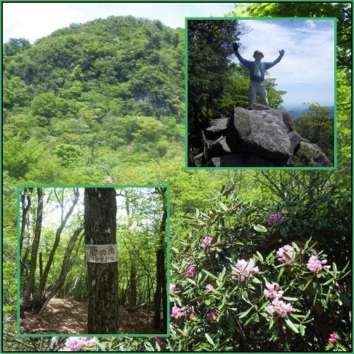 裏英彦山の新緑_e0164643_16362536.jpg
