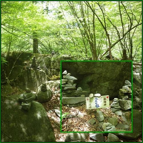 裏英彦山の新緑_e0164643_16364101.jpg