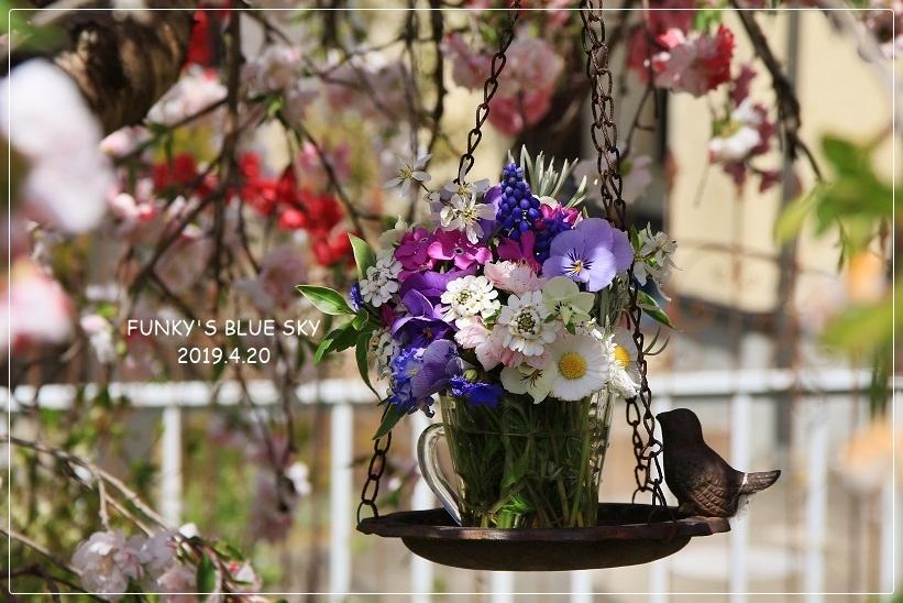 庭の小さなブーケ** (4月20日)_c0145250_09300585.jpg