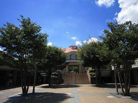東京田園調布教室のお稽古日。_b0299052_19495690.jpg