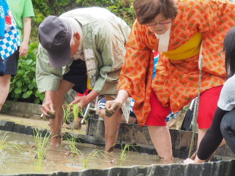 2019年 穂の香御田植祭♪♪_f0220087_01022631.jpg