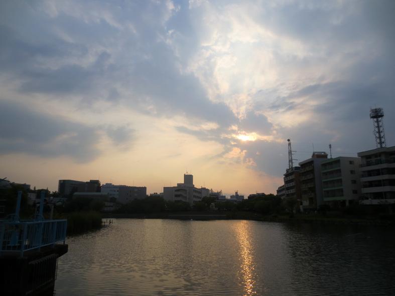 ■西ノ堤池・ピンク色の競演――週替わりの夕暮れ[5/12]_d0190217_22054168.jpg