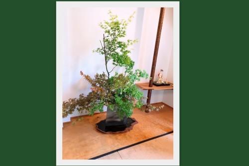 生け花教室へ!_f0139520_08003594.jpg