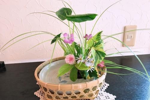 生け花教室へ!_f0139520_09043464.jpg