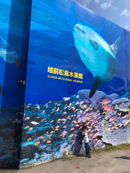 GW福井三国〜石川の旅(2日目)_c0113733_20435033.jpg