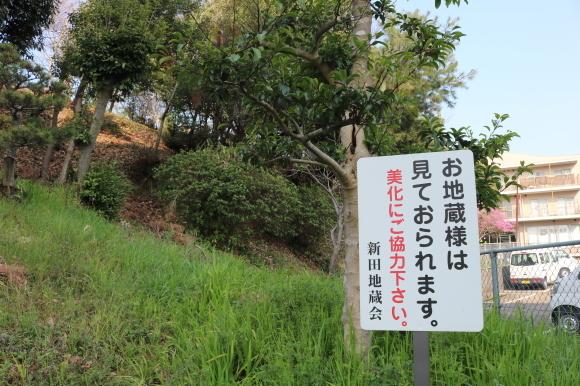 学園前の辻地蔵 ニンニキ_c0001670_14341140.jpg