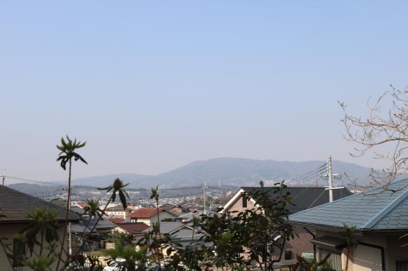 学園前の辻地蔵 ニンニキ_c0001670_14575014.jpg