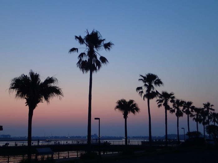 浜名湖ナイト・フィーバー。_c0197578_14284733.jpg