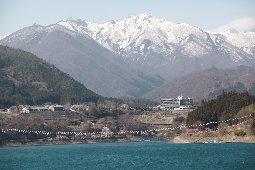 水上町猿ケ京温泉 赤谷湖の新緑とサクラ 後半 _e0165983_10281105.jpg