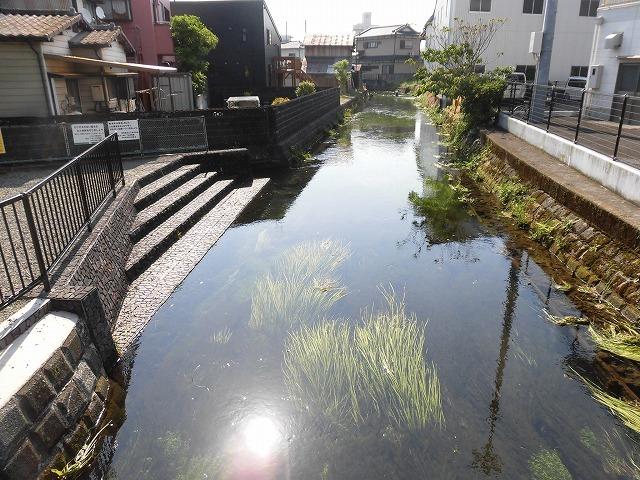 各町内の担当区間によって人数の過不足を調整する必要を感じた田宿川の川そうじ_f0141310_07492191.jpg
