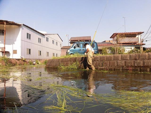 各町内の担当区間によって人数の過不足を調整する必要を感じた田宿川の川そうじ_f0141310_07494441.jpg