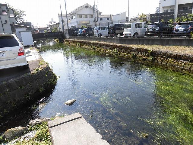 各町内の担当区間によって人数の過不足を調整する必要を感じた田宿川の川そうじ_f0141310_07500754.jpg