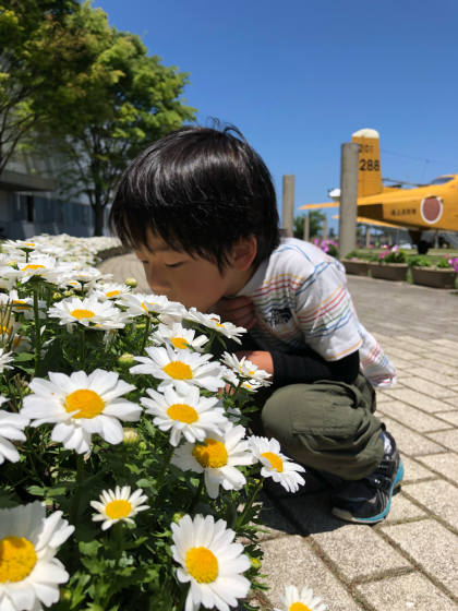 GW福井三国〜石川の旅(4日目)_c0113733_01232809.jpg