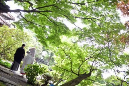 新緑が綺麗な庭園等......婚礼写真は鳥取市内の有隣荘で......_b0194185_21170957.jpg