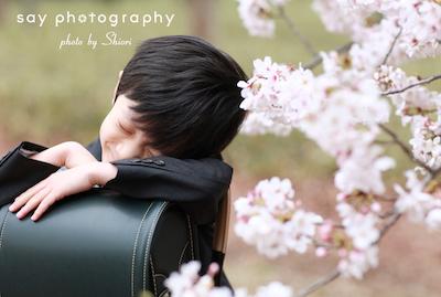 その後の春の話を_d0220593_12135791.jpg