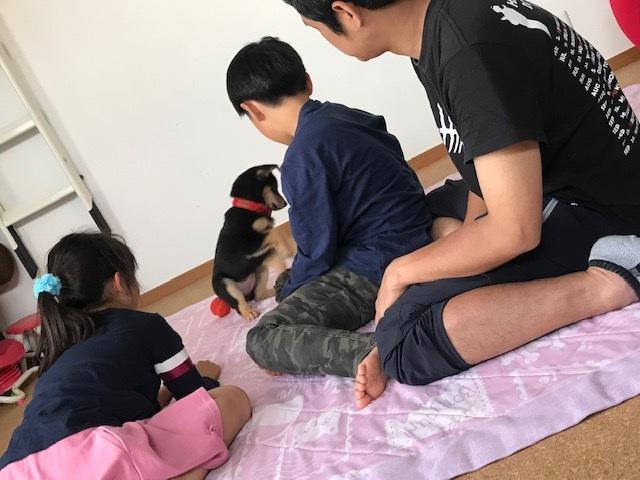 たらちゃん 新生活スタート!_f0242002_13014081.jpg
