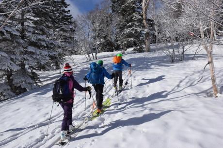 2019年4月27日、小雪交じりの尾瀬至仏山から山の鼻に滑り降りる。_c0242406_10243182.jpg