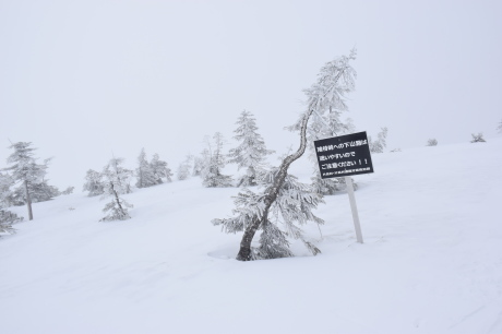 2019年4月27日、小雪交じりの尾瀬至仏山から山の鼻に滑り降りる。_c0242406_12082546.jpg