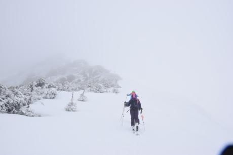 2019年4月27日、小雪交じりの尾瀬至仏山から山の鼻に滑り降りる。_c0242406_13520167.jpg