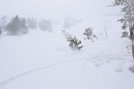 2019年4月27日、小雪交じりの尾瀬至仏山から山の鼻に滑り降りる。_c0242406_14382129.jpg