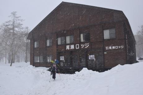 2019年4月27日、小雪交じりの尾瀬至仏山から山の鼻に滑り降りる。_c0242406_14412626.jpg
