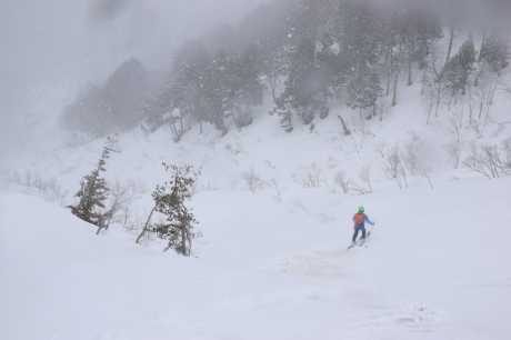 2019年4月27日、小雪交じりの尾瀬至仏山から山の鼻に滑り降りる。_c0242406_16562665.jpg