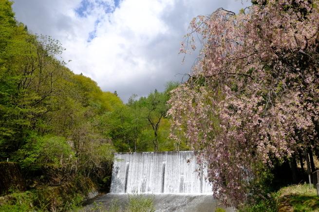 乾徳山と恵林寺_e0000910_10322652.jpg