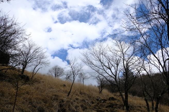乾徳山と恵林寺_e0000910_10461490.jpg