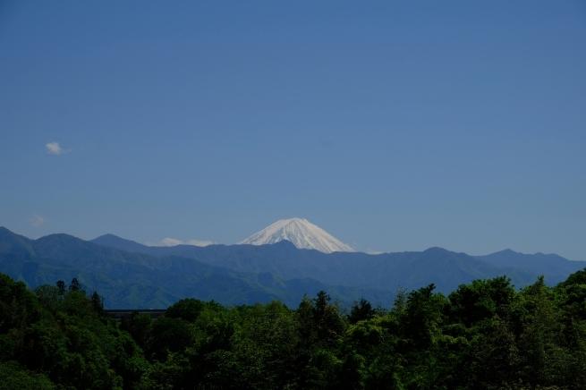 乾徳山と恵林寺_e0000910_11574029.jpg