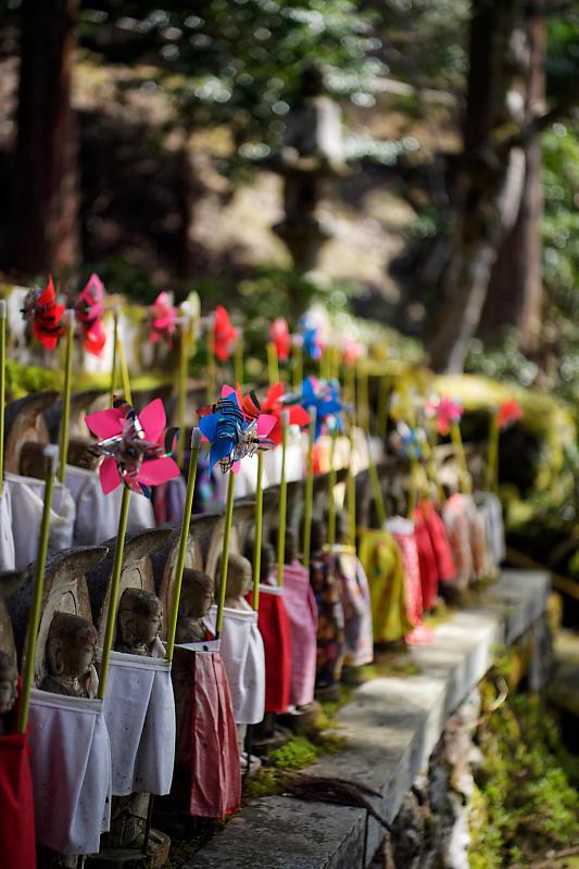 桜巡り2019@京北 大聖院_f0032011_20250763.jpg