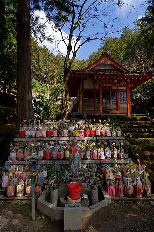 桜巡り2019@京北 大聖院_f0032011_20250774.jpg