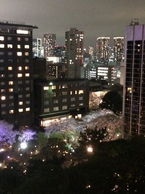 開花 Blooming〜日本縦断のさくら日記_e0103327_10161035.jpg