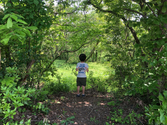 GW福井三国〜石川の旅(5日目)_c0113733_00472466.jpg