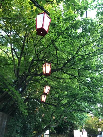 GW福井三国〜石川の旅(5日目)_c0113733_00582744.jpg