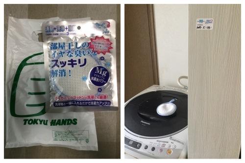 娘の料理 & 洗濯マグちゃん & 花 & ラインペイ_a0084343_09491052.jpeg