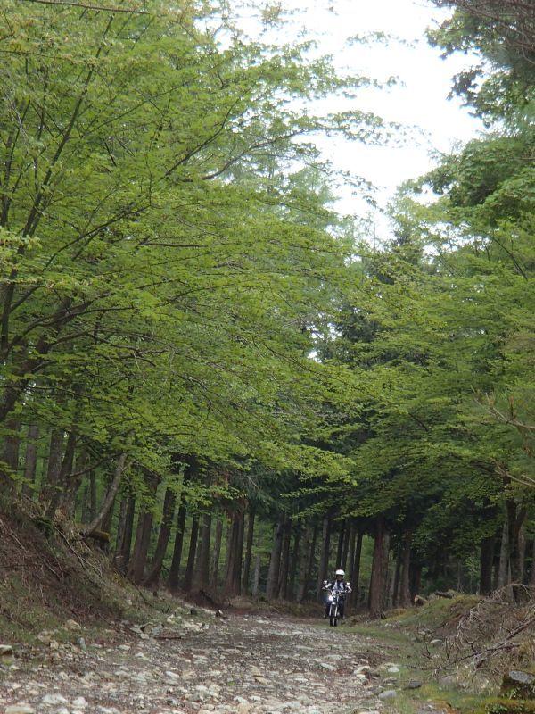 裾野・南部町方面遠征ツーリング_f0119755_13250670.jpg