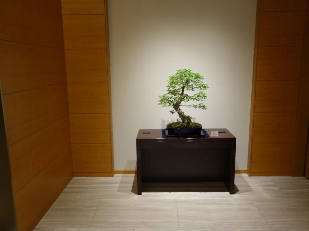 ザ・キタノホテル東京 (1)_b0405262_22210555.jpg
