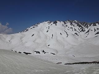 立山のんびりツアー_e0064783_21494209.jpg