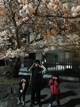夜桜見物 岸和田城で 超!観光気分~♪_e0123286_19281920.jpg