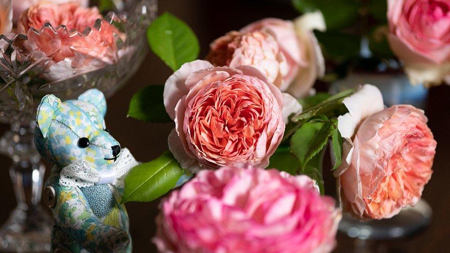 薔薇を愛でるテディベアたち_d0353489_09053063.jpg