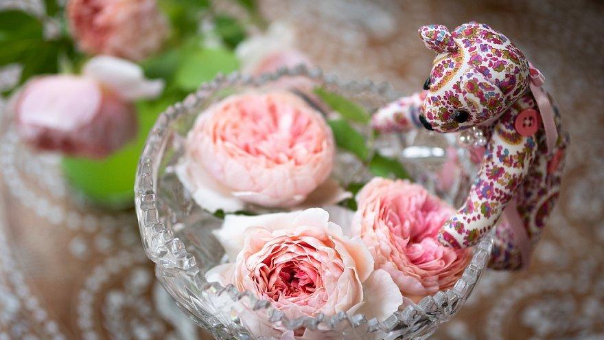 薔薇を愛でるテディベアたち_d0353489_18004556.jpg