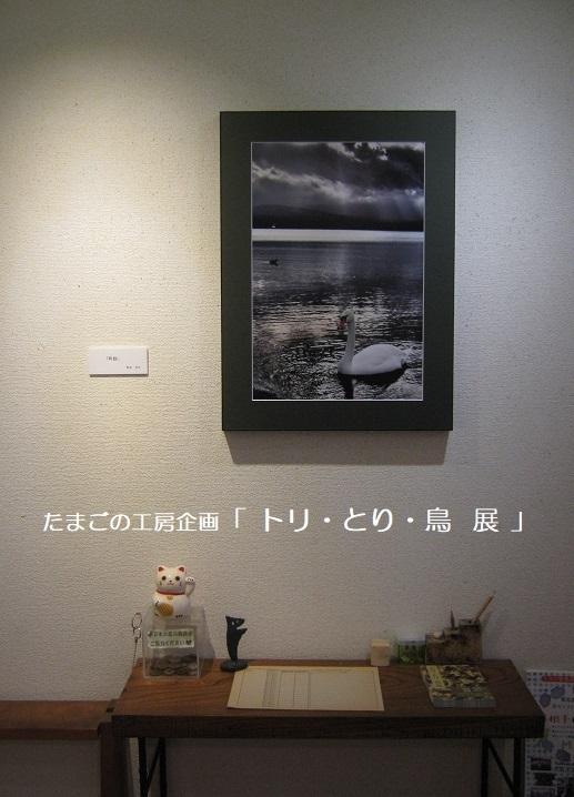 たまごの工房企画「トリ・とり・鳥 展」 その2_e0134502_17471411.jpg
