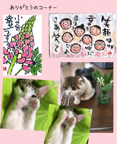 ミカちゃん_f0375804_07013096.jpg