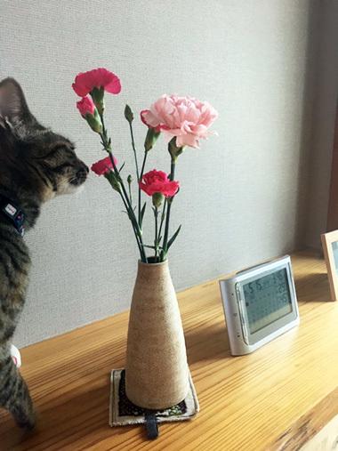 花瓶_a0043405_17124363.jpg