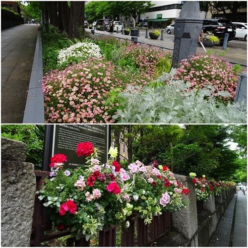 久し振りの横浜へ_c0051105_22350491.jpg