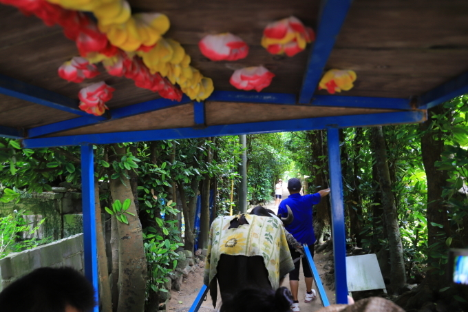 【備瀬のフクギ並木】沖縄旅行 - 5 -_f0348831_20225592.jpg