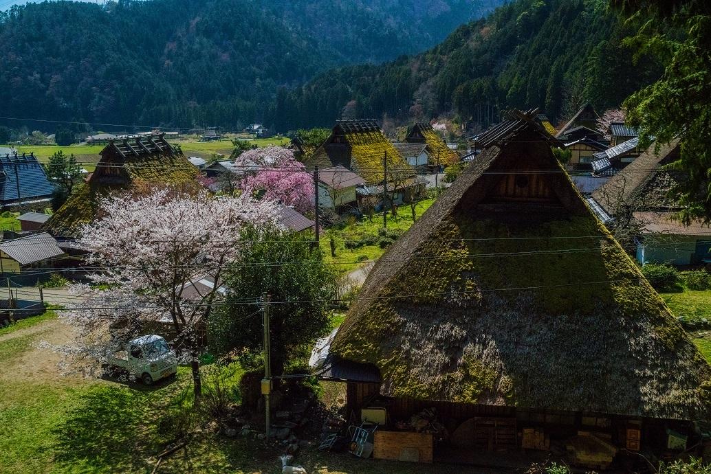 2019京都桜~美山かやぶきの里_e0363038_13480791.jpg