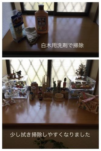娘の料理 & 洗濯マグちゃん & 花 & ラインペイ_a0084343_15080791.jpeg